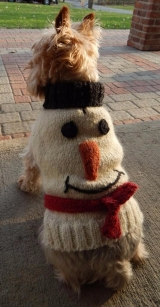 <h5>D001 SNOW MAN DOGGIE SWEATER</h5>