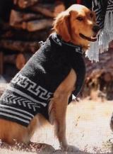 <h5>CAESARS DOG</h5>
