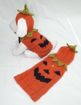 <h5>D004 PUMPKIN SWEATER</h5>